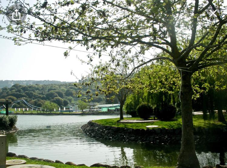 """תשליך באגם מונפורט-נוע""""ם"""