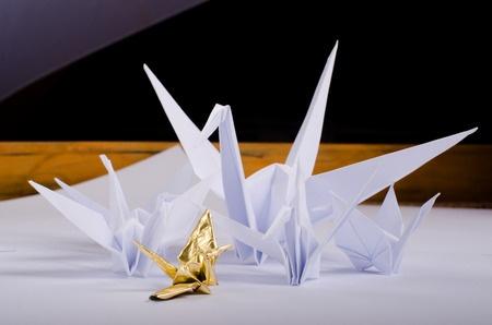 יצירת אוריגמי וקיפולי נייר מיוחדים לכרטיסי ברכה.